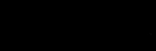 Logo_SE_Black-Screen