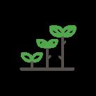 noun_growth_1351619